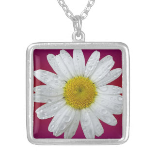 Van Daisy (Roze Achtergrond) het Zilveren Ketting Vierkant Hangertje