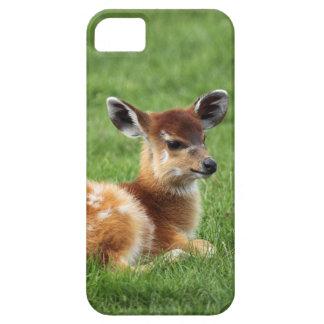 Van de de herten fawn de bosnatuur van het baby di barely there iPhone 5 hoesje