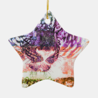 Van de de kattenregenboog van Jaguar de kunstdruk Keramisch Ster Ornament