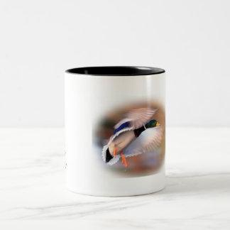 Van de de mannetjeseendwilde eend van de Jacht van Tweekleurige Koffiemok
