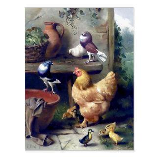 Van de de vogelskip van het boerderij de briefkaart