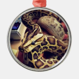 Van de het baby Birmaans python van Hypo de Zilverkleurig Rond Ornament