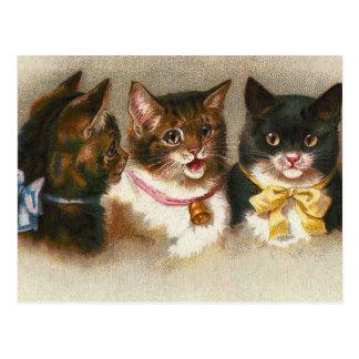 """Van """"drie Vintage Katten"""" het Briefkaart"""