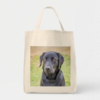Van een hond zak draagtas
