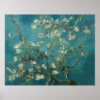 Van Gogh Almond Takken in Bloei Poster