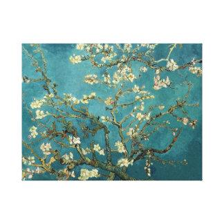 Van Gogh Blossoming het Canvas van de Boom van de
