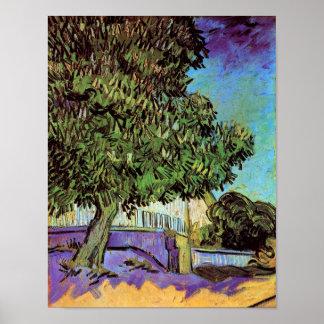 Van Gogh - de Boom van de Kastanje in Bloesem Poster