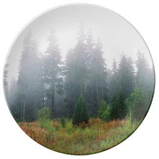 Van het de pijnboomhout van de natuur van de de porselein bord