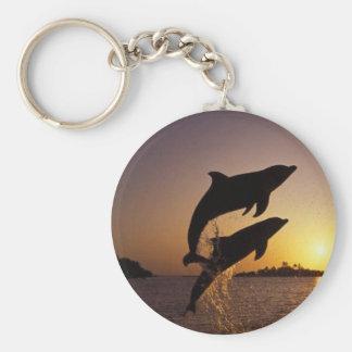 Van het watervissen van dolfijnen van de de sleutelhanger
