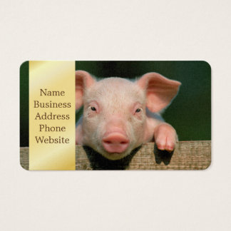 Varkensfokkerij - varkensgezicht visitekaartjes
