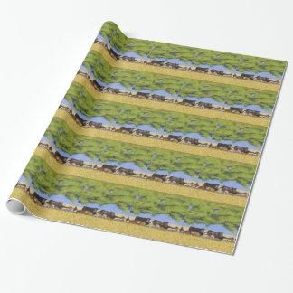 Vee onder de Boom van de Schaduw…  100 graden plus Inpakpapier