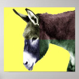 Vele Kleuren Burro Poster