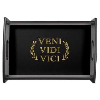 Veni Vidi Vici de Grappige Winnaar van het Spel Dienblad