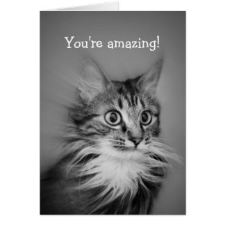 Verbaasde Kat met de Gelukkige Verjaardag van de Kaart
