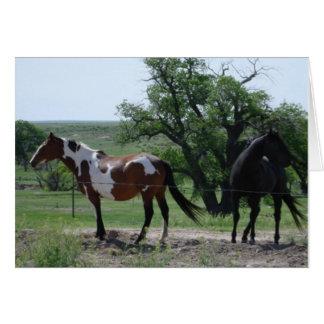 Verf en Zwarte Paarden Wenskaart