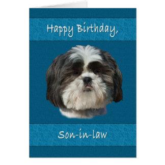 Verjaardag, Schoonzoon, de Hond van Shih Tzu Kaart
