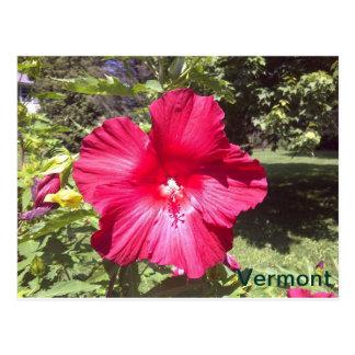 Vermont Briefkaart