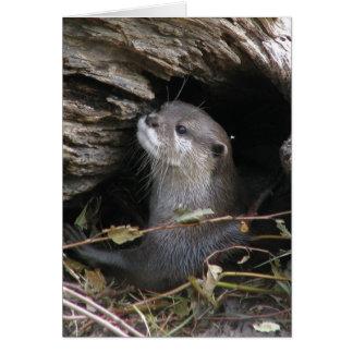 Verrukkelijke otter-ly wenskaart