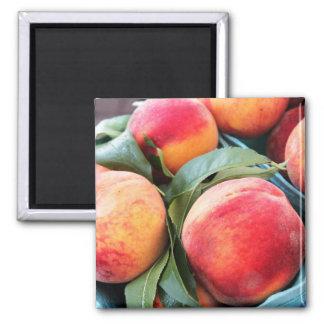 Vers Fruit - de Magneet van Perziken