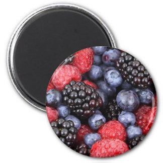 Vers Fruit Magneet