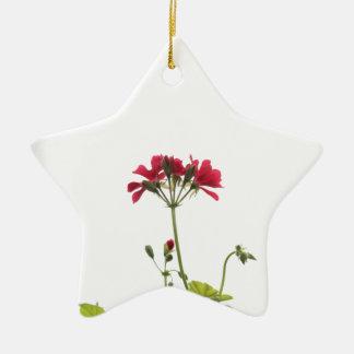 Verse Bloem Keramisch Ster Ornament