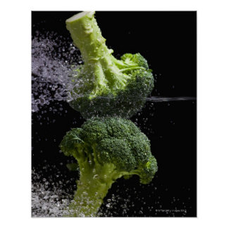 Verse Groenten & de Hygiëne van het Voedsel Poster
