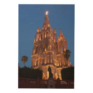 Versierd Lit van de Kathedraal bij Nacht Hout Afdruk