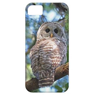 Versperde Uil in het Bos Barely There iPhone 5 Hoesje