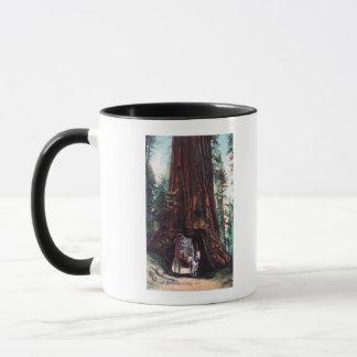 Vervoer die onder een ReuzeCalifornische sequoia Mok