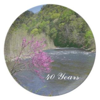 Vierend 40 jaar van het Bord
