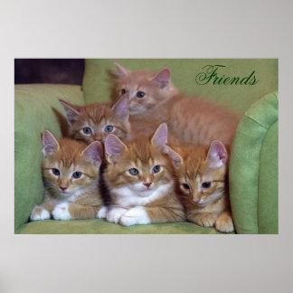 Vijf Oranje Katjes op Stoel Poster