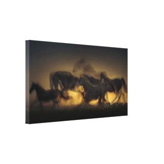 Vijf Paarden bij het Art. van het Canvas van de