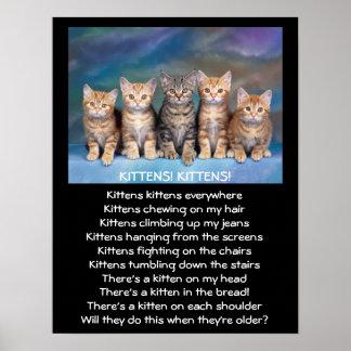 Vijf Schattige Katjes van de Gestreepte kat Poster
