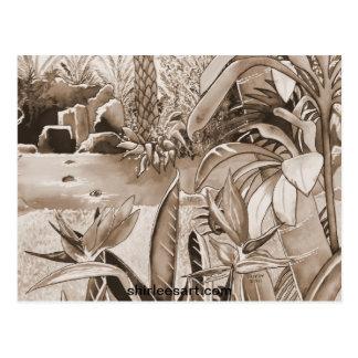 Vijver bij de Aanplanting van de Ananas Briefkaart