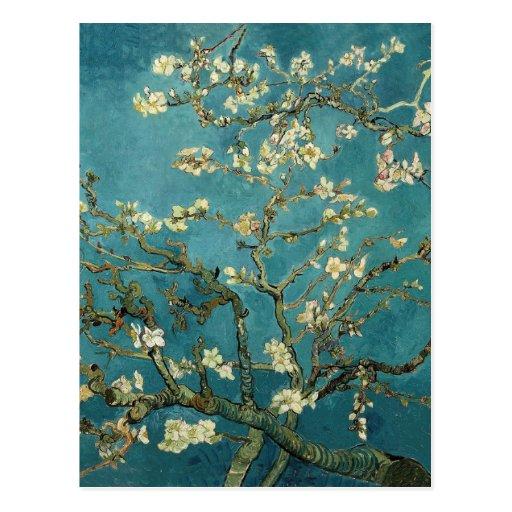 Vincent van Gogh - de Tot bloei komende Boom van d Wens Kaart