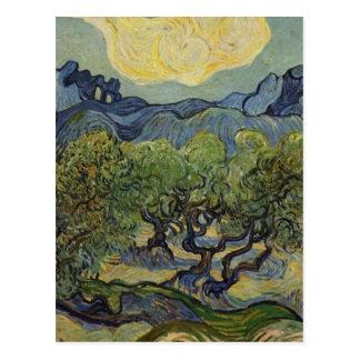 Vincent van Gogh - Landschap met Olijfbomen Briefkaart