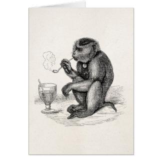 Vintage Aap die een Dier van de Apen van de Pijp Briefkaarten 0