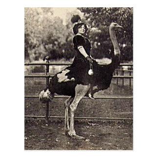 Vintage Actrice Broadway die een Struisvogel Briefkaart