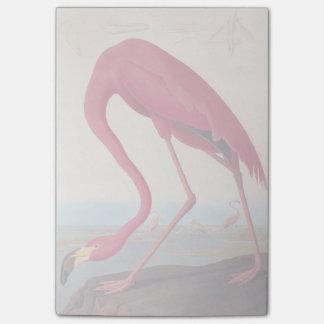 Vintage Amerikaanse Roze Flamingo Audubon Post-it® Notes