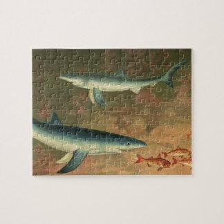 Vintage Blauwe Haai die Vissen, het Mariene Leven Puzzel