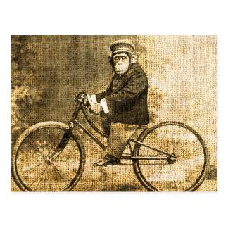 Vintage Chimpansee op een Fiets Briefkaart