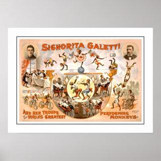 Vintage Circus dat Apen uitvoert Poster