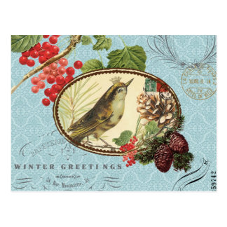 Vintage de vakantie-Winter vogel-Briefkaart Briefkaart