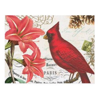 vintage de winterkardinaal briefkaart