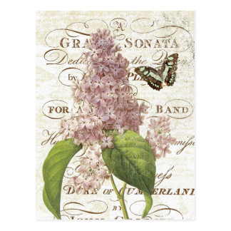 Vintage Frans Botanisch lila briefkaart