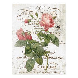 Vintage Franse Botanisch nam briefkaart toe