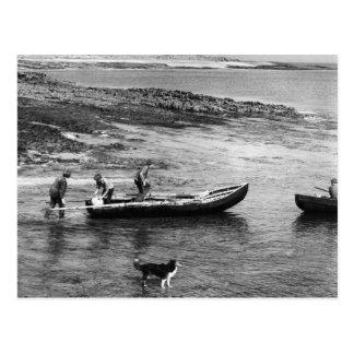 Vintage Ierland, de Boten van Currach van het Briefkaart