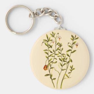 Vintage Illustratie van een Plant van de Basic Ronde Button Sleutelhanger