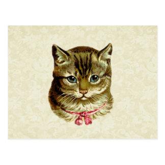 Vintage Kat met Roze Boog Briefkaart