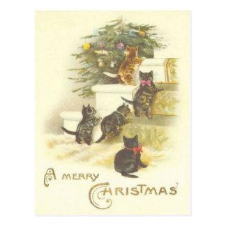 Vintage Katten op Briefkaart van Kerstmis van